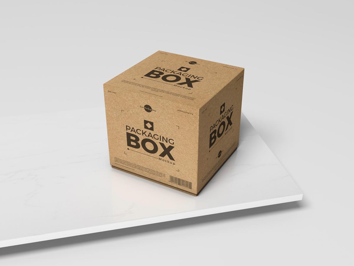 Free Packaging Box Mockup