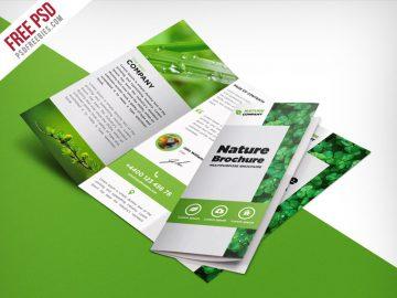 Nature Tri Fold Brochure Template - Free PSD