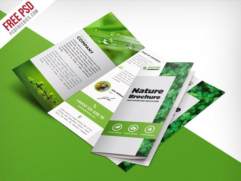 Nature Tri Fold Brochure Template – Free PSD