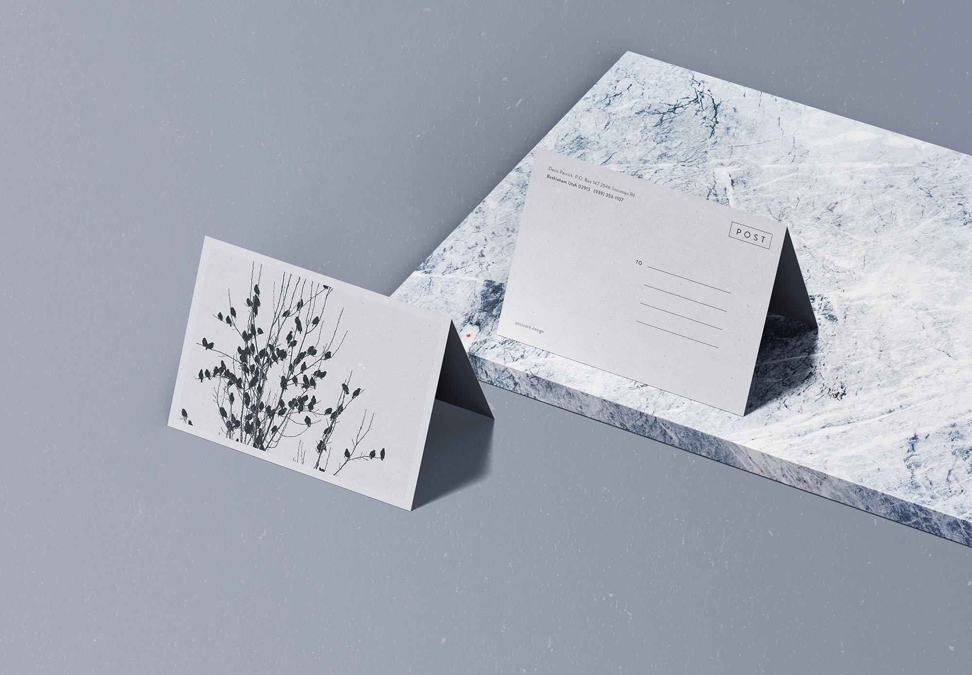 Free Folded Postcard Mockup