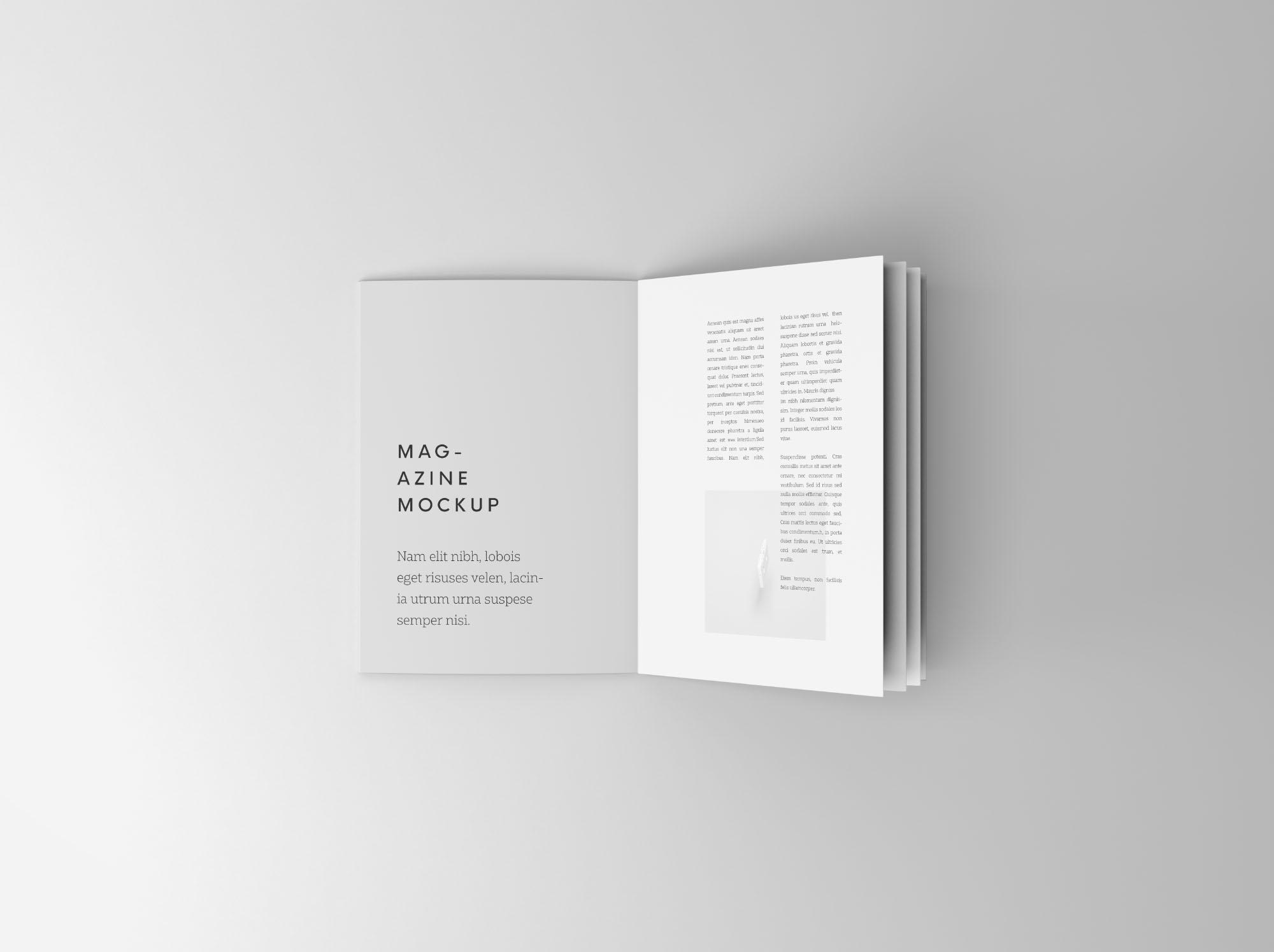 Free Overhead Booklet Mockup