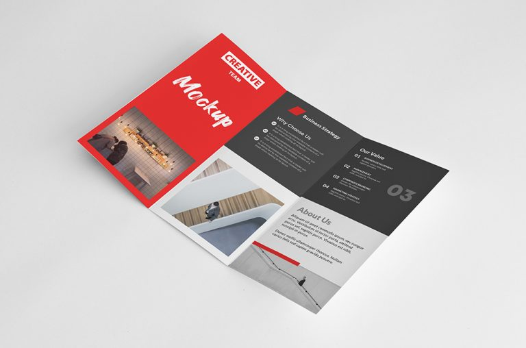 Tri Fold Brochure Inside Mockup